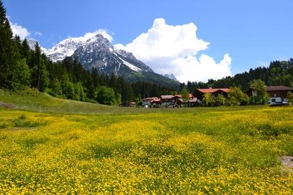 Grundstücke in 6351 Scheffau am Wilden Kaiser