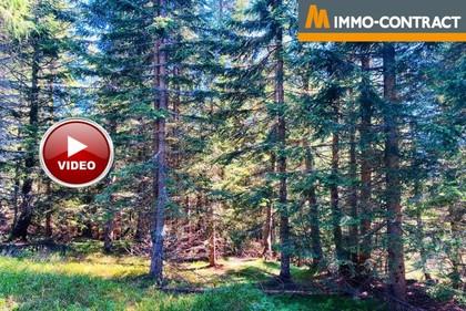 Land- / Forstwirtschaft in 9943 Untertilliach