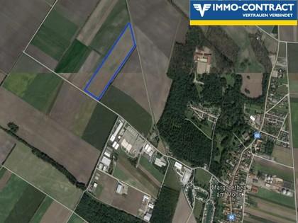 Grundstücke in 2433 Margarethen am Moos