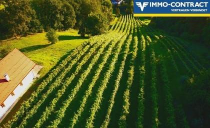 Land- / Forstwirtschaft in 7563 Königsdorf