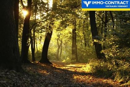 Land- / Forstwirtschaft in 8380 Henndorf im Burgenland