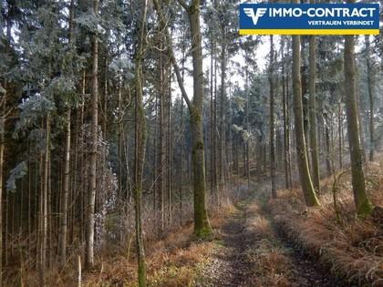 Land- / Forstwirtschaft in 3314 Strengberg