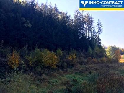 Land- / Forstwirtschaft in 3542 Gföhl