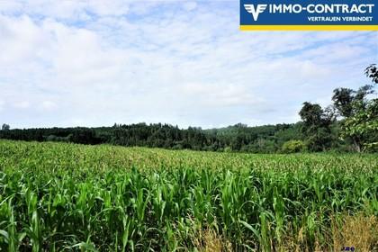 Landwirtschaftliche Fläche - Äcker, Wiesen u. Wald
