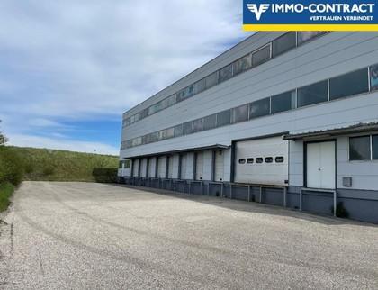 Hallen / Lager / Produktion in 3382 Loosdorf