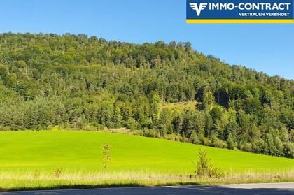 Land- / Forstwirtschaft in 3283 Sankt Anton an der Jeßnitz