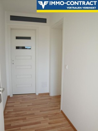OPTIMALE SINGLEWOHNUNG