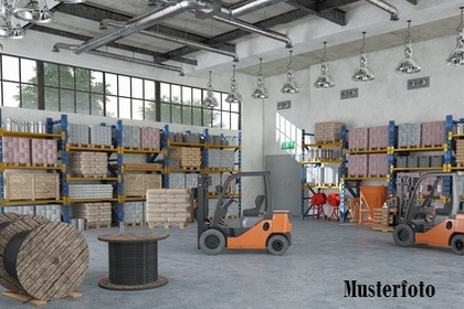 Hallen / Lager / Produktion in 6422 Stams