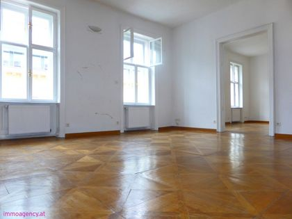 Spacious flat in the heart of Vienna