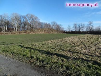 Grundstücke in 2490 Haschendorf