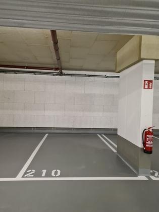Parken in 1220 Wien