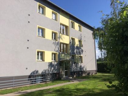 Wohnungen in 2482 Münchendorf