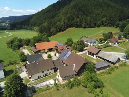 Häuser in 8670 Krieglach