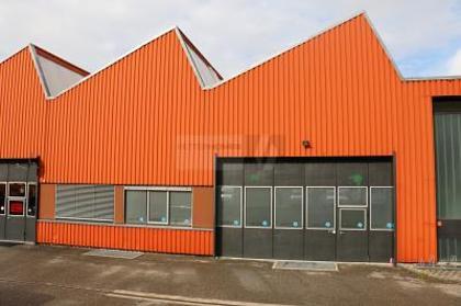 Hallen / Lager / Produktion in 8409 Winterthur