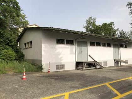 Hallen / Lager / Produktion in 3250 Lyss