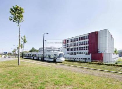 Büros /Praxen in 8304 Wallisellen