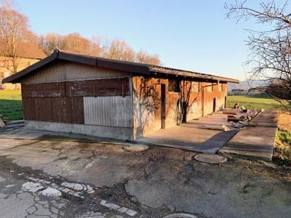 Hallen / Lager / Produktion in 8932 Mettmenstetten