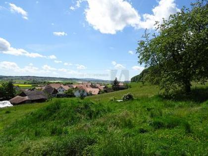 Häuser in 4588 Oberramsern