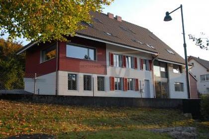 Wohnungen in 4419 Lupsingen