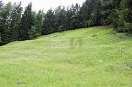 Grundstücke in 3961 Mayoux