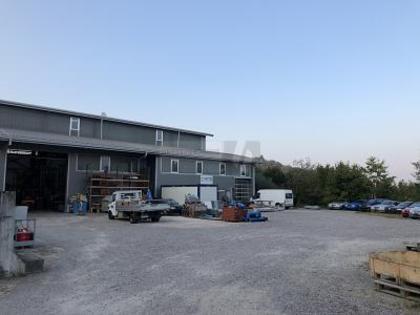 Hallen / Lager / Produktion in 5316 Felsenau