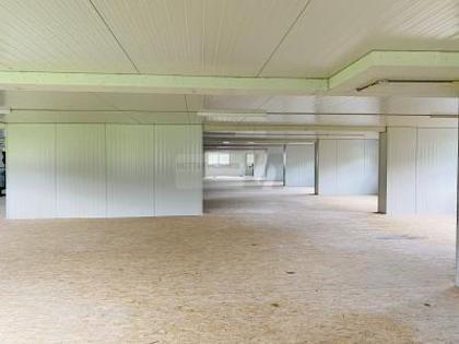 Hallen / Lager / Produktion in 6423 Seewen