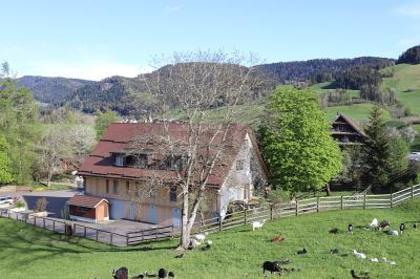 Häuser in 6313 Menzingen