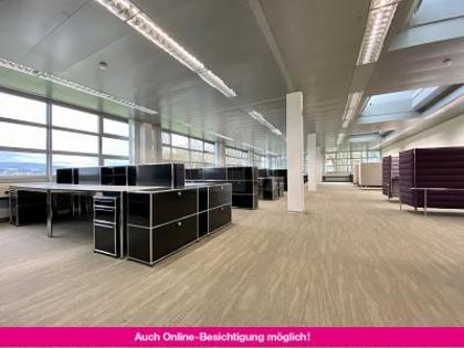 Büros /Praxen in 6300 Zug