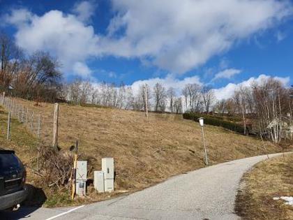 Grundstücke in 4204 Reichenau im Mühlkreis