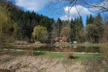 Grundstücke in 8051 Thal