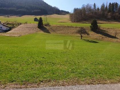 Grundstücke in 4463 Großraming