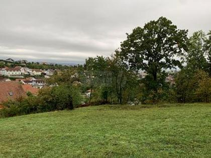 Grundstücke in 7222 Rohrbach bei Mattersburg