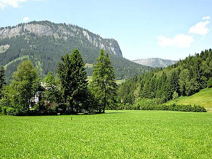 Baugrundstück in Tauplitz
