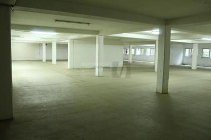 Hallen / Lager / Produktion in 53842 Troisdorf