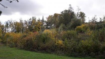 Grundstücke in 93133 Burglengenfeld