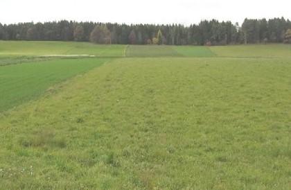 Grundstücke in 9586 Fürnitz