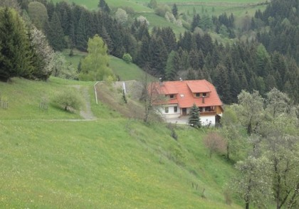 Land- / Forstwirtschaft in 9372 Eberstein