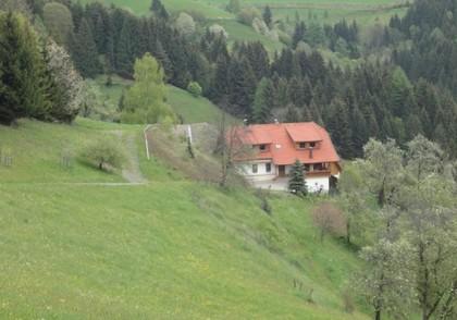 Land- / Forstwirtschaft in 9371 Brückl