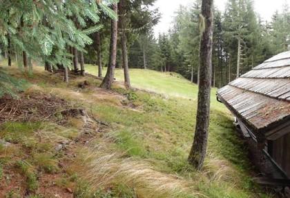 Häuser in 9344 Weitensfeld