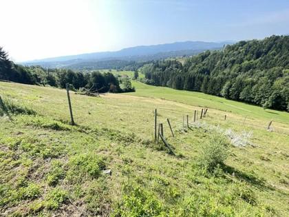 Land- / Forstwirtschaft in 8551 Etzendorf