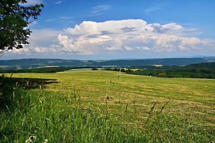 Land- / Forstwirtschaft in  Slowakei