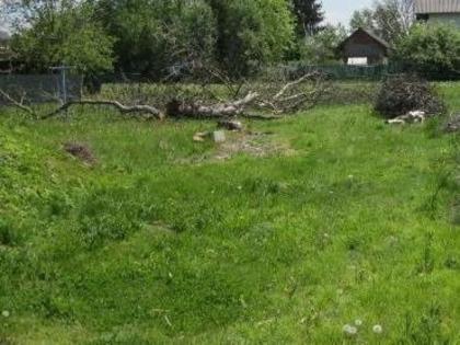 Sonniges Baugrundstück in Lieboch
