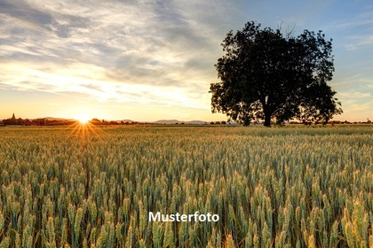 Land- / Forstwirtschaft in 27327 Martfeld