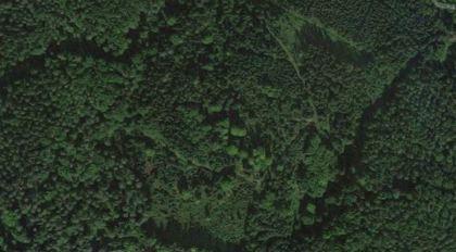 Land- / Forstwirtschaft in 8152 Södingberg