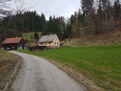 Häuser in 8152 Södingberg