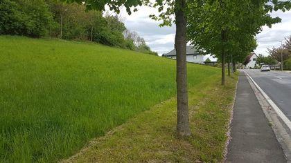Grundstücke in 8282 Loipersdorf bei Fürstenfeld