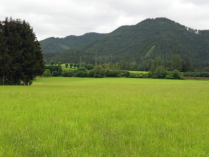 Grundstücke in 8670 Krieglach