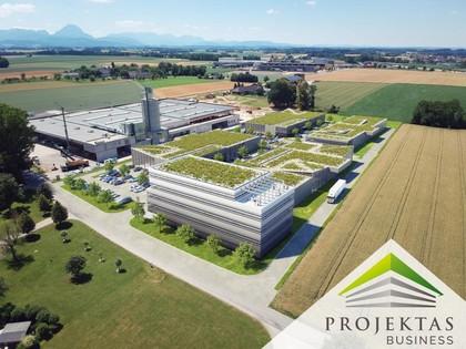 Hallen / Lager / Produktion in 4653 Eberstalzell