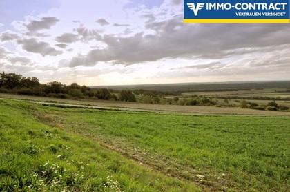 Land- / Forstwirtschaft in 7464 Markt Neuhodis