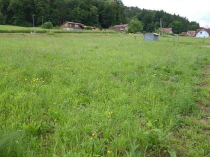 Grundstücke in 8430 Leibnitz